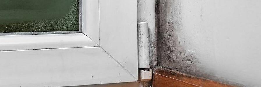 mietminderung durchsetzen so gelingt die minderung. Black Bedroom Furniture Sets. Home Design Ideas